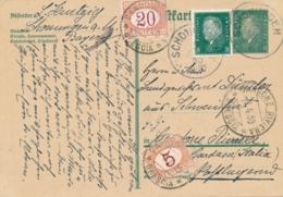 Italia - 1930 - 20 & 5c Postage Due On Postkarte From Schonungen To Gardone Riviera Brescia - Italië