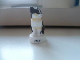 FEVE  CHAT  CAT GATO  FELIX - Animaux