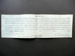 Breve Papa Pio VII Pergamena Autografo Cardinale Braschi Onesti 1803 Religione - Libri, Riviste, Fumetti