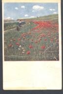 WW1 CENSORSHIP ON SZMYEI- POPPY FIELD PAINTING POSTCARD, 1920, ROMANIA - Cartas De La Primera Guerra Mundial