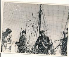Port De WUSTROW,  ALLEMAGNE, 1967 - Coopérative De Pêche - Photo 16,5 X 21 Cm - Bateaux