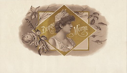 1893-1894 Grande étiquette Boite à Cigare Havane Dona Morna - Etiquettes