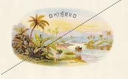 1893-1894 Grande étiquette Boite à Cigare Havane ORONICO - Etiquettes