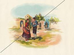 1893-1894 Grande étiquette Boite à Cigare Havane LA RIVALIDAD - Etiquettes