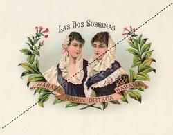 1893-1894 Grande étiquette Boite à Cigare Havane LAS DOS SOBRINAS - Etiquettes
