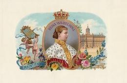 1893-1894 Grande étiquette Boite à Cigare Havane REINE WILHELMINA - Etiquettes