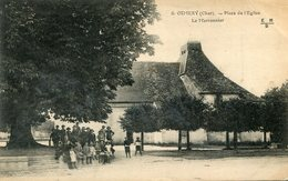 OSMERY(ARBRE) MARRONNIER - France