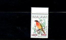 "MALAWI, 2018, BIRD, O/P, NEW VALUE, ""k900"" 1v. MNH** NEW! - Oiseaux"