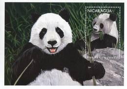 Lote 1996, Nicaragua, 1996-1, HF, SS, Oso Panda, Bear - Nicaragua