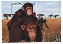 Lote 1996, Nicaragua, 1996-2, HF, SS, Mono, Monkey - Nicaragua