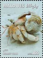 Maldives 2018, Animals, Hermit Crab, 1val - Maldive (1965-...)