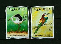 Maroc 1991,2V In Set ,birds,vogels,vögel,oiseaux,pajaros,uccelli,aves,MNH/Postfris(A3633) - Oiseaux