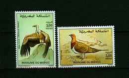 Maroc 1992,2V In Set ,birds,vogels,vögel,oiseaux,pajaros,uccelli,aves,MNH/Postfris(A3634) - Vogels