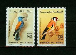 Maroc 1995,2V In Set ,birds,vogels,vögel,oiseaux,pajaros,uccelli,aves,MNH/Postfris(A3636) - Oiseaux