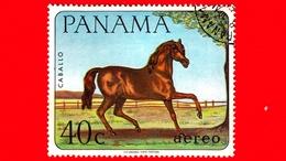 PANAMA - Nuovo - 1967 - Animali Domestici - Cavallo - Horse (Equus Ferus Caballus) - 40 - P. Aerea - Panama