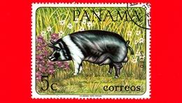 PANAMA - Nuovo - 1967 - Animali Domestici - Maiale - Pig (Sus Scrofa Domestica) - 5 - Panama
