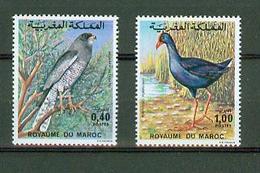 Maroc 1976,2V In Set ,birds,vogels,vögel,oiseaux,pajaros,uccelli,aves,MNH/Postfris(A3639) - Oiseaux