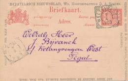 Nederlands Indië - 1903 - 5 Cent Cijfer, Briefkaart G14 Particulier Bedrukt Bataviaasch Nieuwsblad Naar Tegal - Indes Néerlandaises