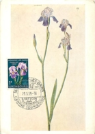Luxembourg Floralies Mondorf Les Bains 1959   Carte Maximum Card CM - Maximum Cards