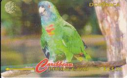 DOMINICA(GPT) - Jaco Parrot/Amazona Aurausica, CN : 225CDMA, Tirage 15000, Used - Dominica