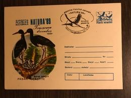 ROMANIA 1989  Postal Stationery PSE Birds Storks Mint - Birds