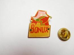 Beau Pin's , Magasin Auchan , Lessive Bonux - Pin's