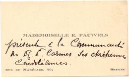 Visitekaartje - Carte Visite -  Mademoiselle E. Pauwels - Bruges Brugge - Cartes De Visite