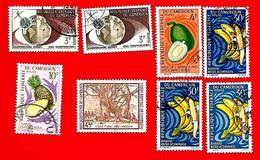 3374 -- CAMEROUM  --  Lot De Timbres; Oblitérés - Cameroun (1960-...)