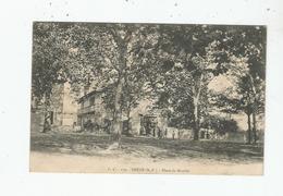 THEZE (B P) 179 PLACE DU MARCHE (ATTELAGES CHEVAUX ET PETITE ANIMATION) 1906 - Francia
