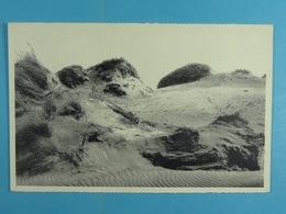 Middelkerke Le Sentier Tracé Dans La Dune (Série Plage N°9) - Middelkerke
