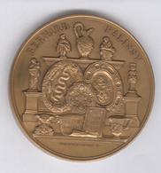 Médaille Bernard Palissy - Né Vers 1500 , Précurseur Des Chimistes , Des Géologues... - France