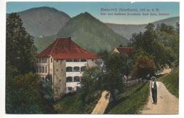 BEINWIL (Solothurn) Kur- Und Gasthaus Neuhäusli Emil Roth Gel. 1913 V. Erschwil N. Riehen - SO Soleure