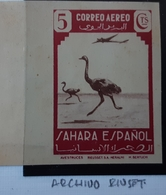 Sahara 75**sin (archivo Riuset - Sahara Español