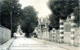 91 - Environs De Corbeil-Essonne - Evry-Petit-Bourg - Avenue De Mousseau. - Corbeil Essonnes