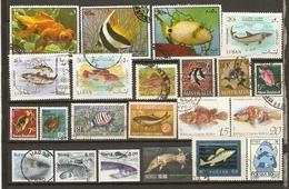 Monde - Poissons - Petit Lot De 63 Timbres Différents - 60 ° - 3 MNH /St Pierre Et Miquelon/British Honduras - 3scans - Timbres