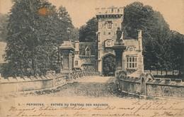 PEPINSTER ENTREE ENTRéE DU CHATEAU DES MAZURES 1905 - Pepinster