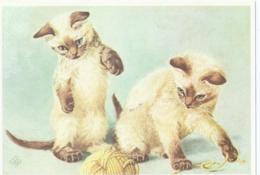 Chat - Kat - Katz - Cat - Chocolate Point Siameesjes - Ontwerp KO Van Den Broecke - Chats