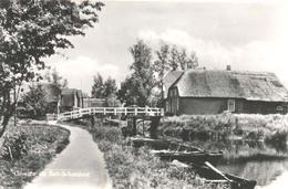 Belt - Schutsloot, Groeten Uit Belt - Schutsloot  (glansfotokaart)  (Steenwijkerwold) - Steenwijk