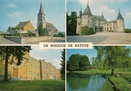 Un Bonjour De NATOYE. Multivue: L'Eglise, Le Château De Mouffrin, Relai Patro (2 Vues). - Hamois
