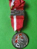 SVIZZERA  Campionato Gruppi Di Tiro 1996 - Medaglie