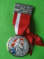 SVIZZERA  Campionato Gruppi Di Tiro 1999 - Medaglie