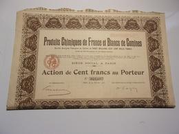Produits Chimiques De France Et Blancs De Comines (1931) - Shareholdings