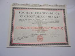 FRANCO-BELGE CAOUTCHOUC MOUSSE (2500 Francs) - Shareholdings
