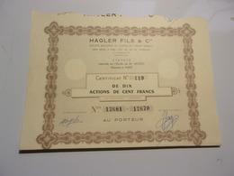 HAGLER FILS & Cie (certificat De 10 Actions De 100 Francs) - Shareholdings