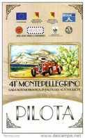 PASS BADGE RACE MOTORSPORTS SALITA MONTEPELLEGRINO HISTORIC PILOTA - Car Racing - F1