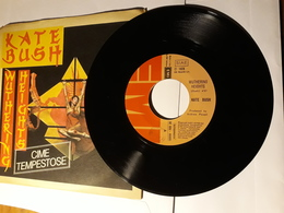 Kate Bush  -  1978.  EMI - Cime Tempestose . (Wuthering Heights) - Disco, Pop