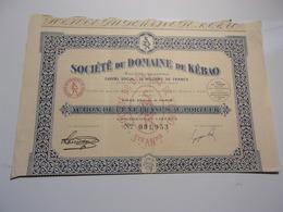 Domaine De Kébao (1924) - Shareholdings