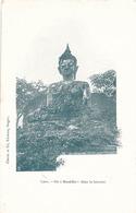 UN BOUDDHA DANS LA BROUSSE - Laos