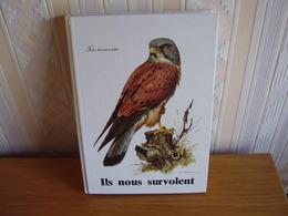 Album Chromos Images Vignettes Delhaize *** Les Oiseaux  -  Birds *** - Autres