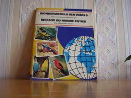 Album Chromos Images Vignettes Hugo Hein *** Oiseaux - Birds *** - Autres